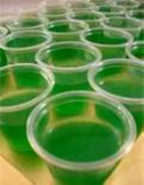 Margaritaville Jello Shots
