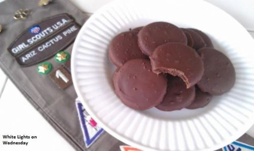 Homemade Thin Mint Girl Scout Cookies