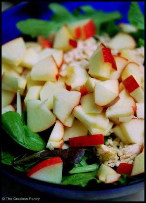 Clean Eating Chicken Apple Salad Recipe