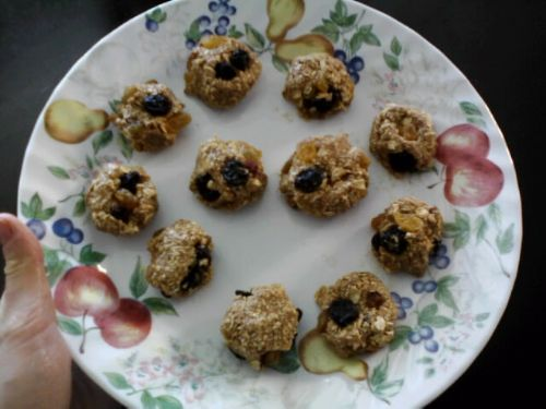 Raw Vegan Raisin Oaties