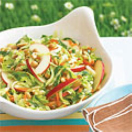 Sweet and Sour Cole Slaw with Apples