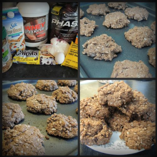 Chocolate Chip Coconut Protein Cookies