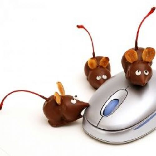 Chocolate Cherry Mouse