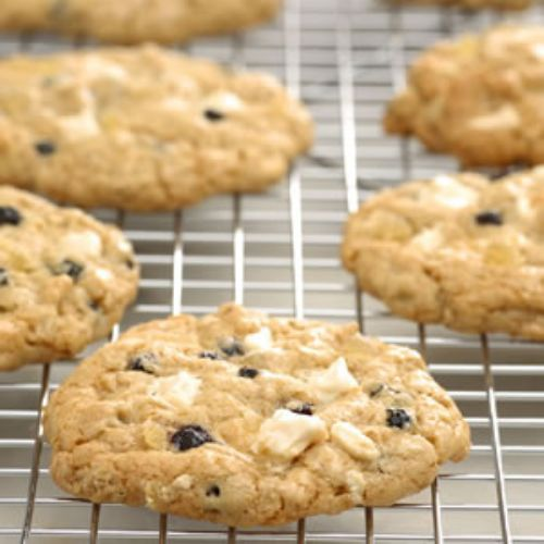 Blueberry and White Chocolate Chunk Ginger Cookie