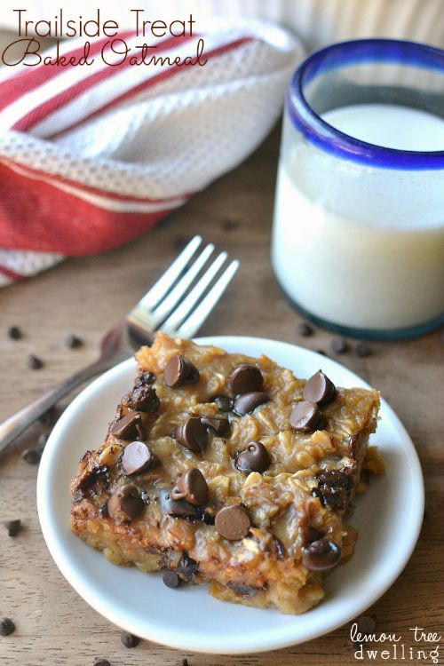 Baked Oatmeal Trailside Treat Bars