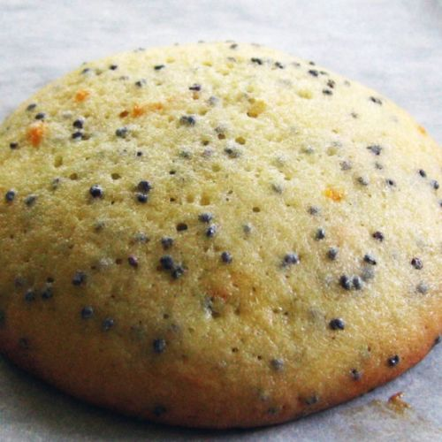 Grapefruit and Poppy Seed Cookies