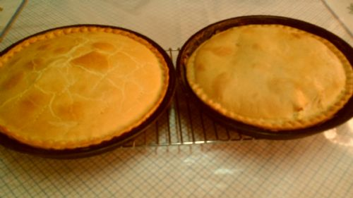 My Spinach and Ricotta pies